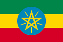 駐日エチオピア大使館の領事認証の申請代行