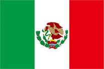 メキシコで提出するスペイン語翻訳文書のアポスティーユ申請の代行