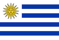 ウルグアイで提出するスペイン語翻訳文書のアポスティーユ申請の代行