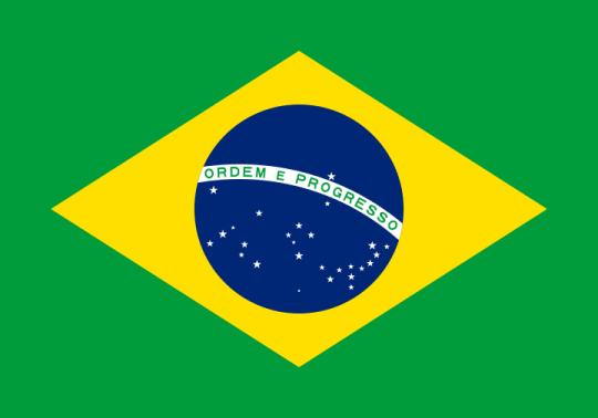 ブラジルで提出する文書のアポスティーユ申請の代行