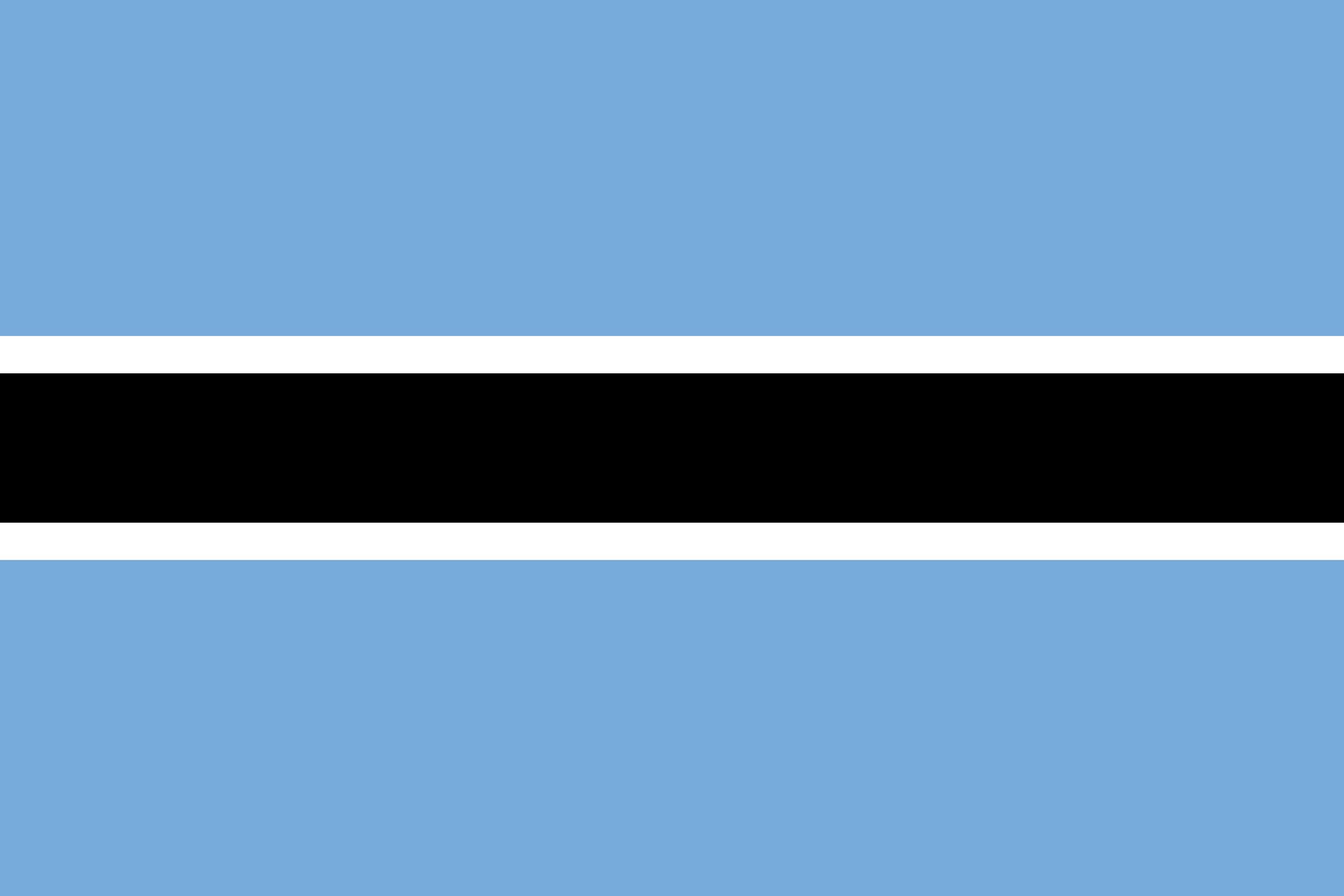 ボツワナ共和国で提出する文書のアポスティーユ申請の代行