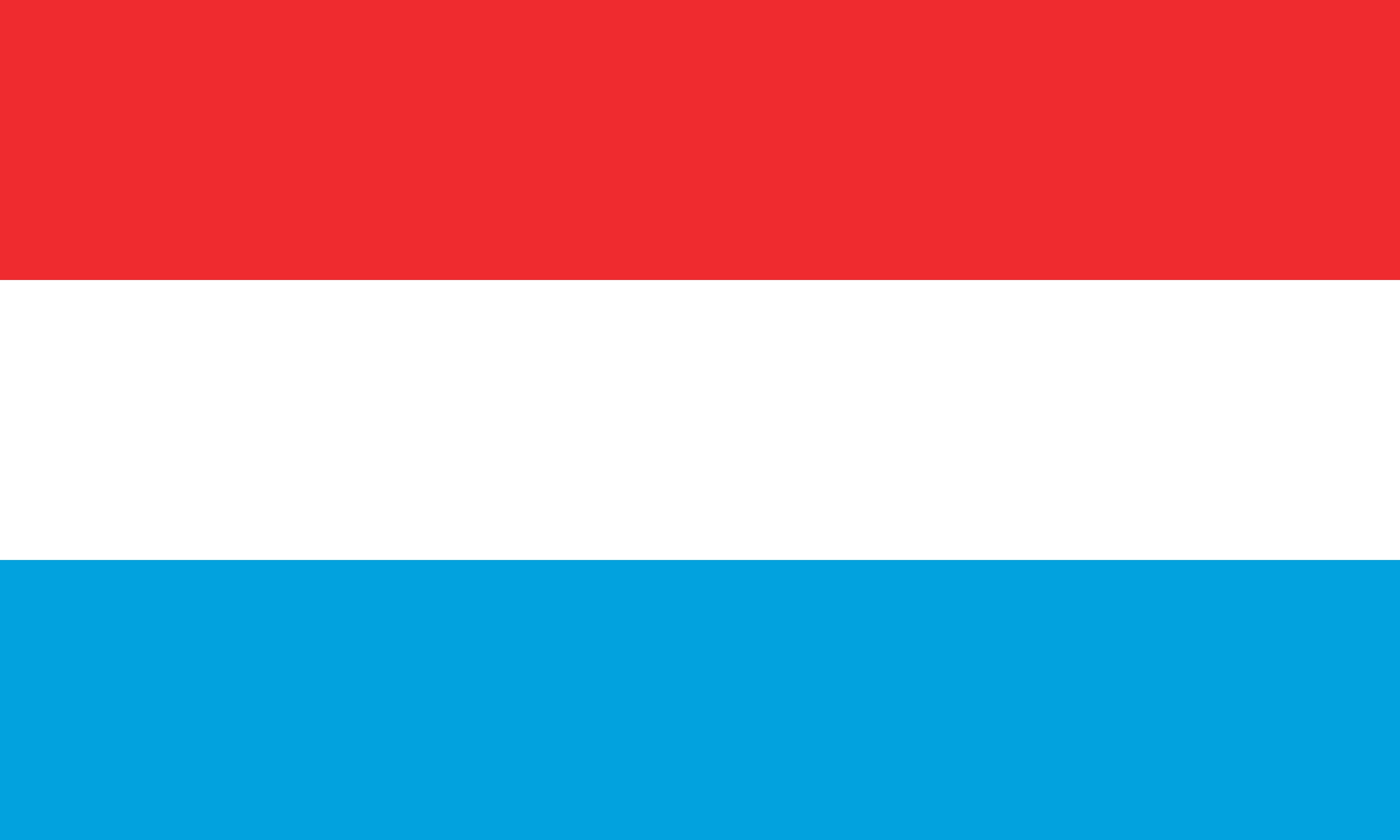ルクセンブルクで提出する文書のアポスティーユ申請の代行