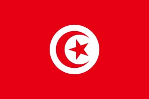チュニジアで提出する文書のアポスティーユ申請の代行